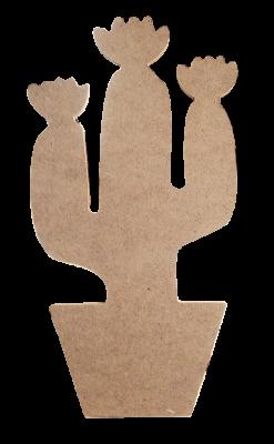 D33 Küçük Boy Kaktüs